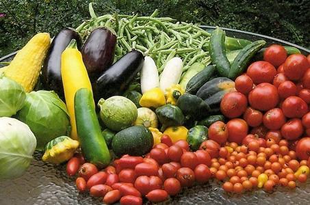 Prepare for Your Best Garden Yet