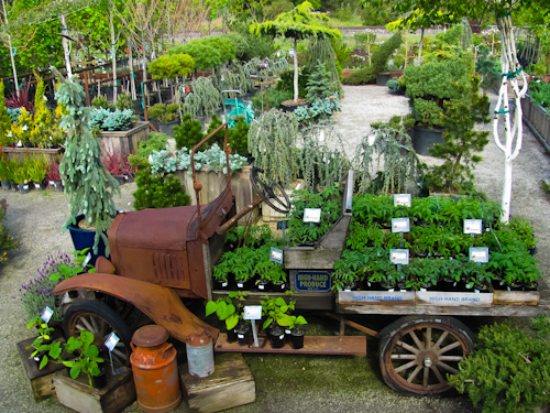 Please Be Warned That When You Enter The Peaceful And Serene Beauty Of Our Nursery Will Lose Track Time S Ok Feel Free To Unwind