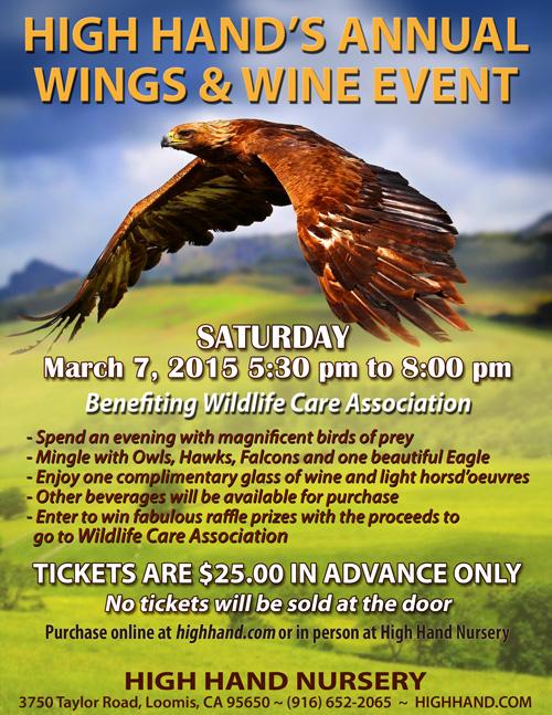 WingsWine2015_500px