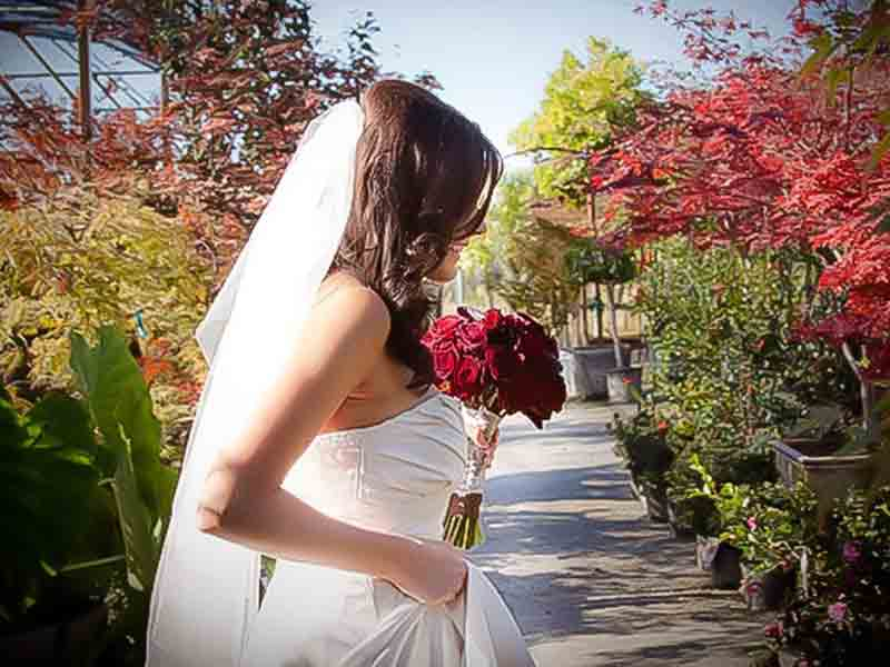 High-Hand-Nursery-Weddings-Events-1