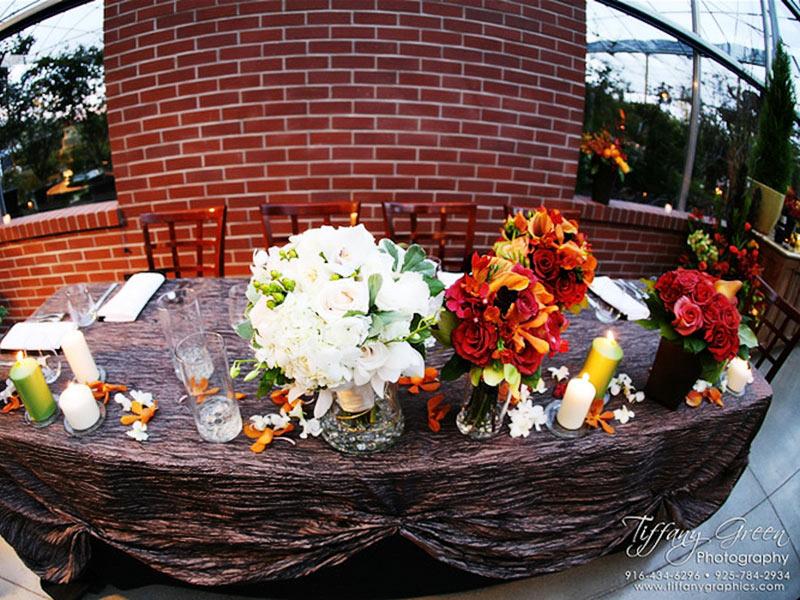 High-Hand-Nursery-Weddings-Events-16